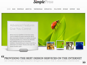 Elegant Themes Simple Press Sample